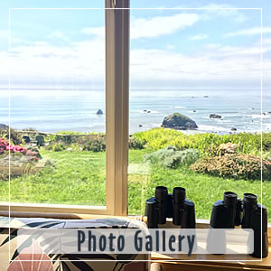 photo gallery at turtle rocks inn trinidad ca