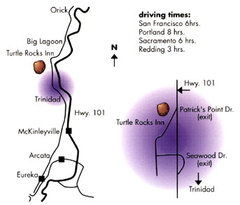 driving map to trinidad ca